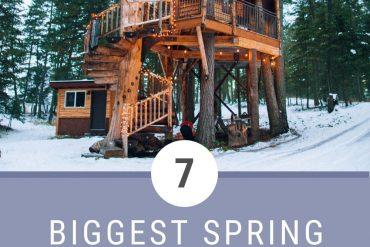 Spring break travel trends